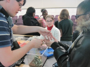 Letting middle school students hold insects at the Girls' Math and Science Day.